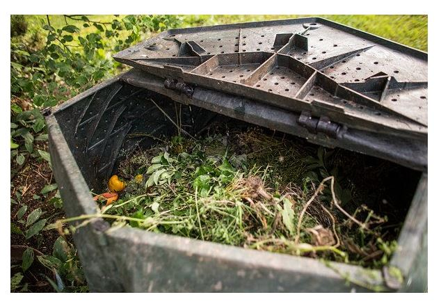 Compost for Gardening